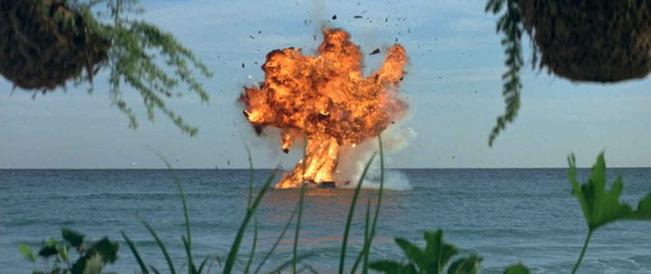 Often times the best way to avoid a shark attack is to simply blow yourself up.